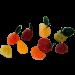 Pâte de fruits 70% de pulpe - 2KG